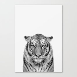 African Tiger Canvas Print