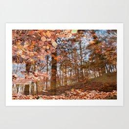 Avalon Fall Reflections Art Print