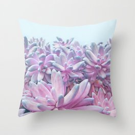 Sweet Succulents Throw Pillow