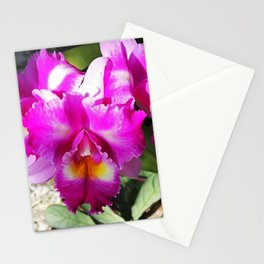 The One Left Behind Stationery Cards