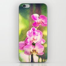 Orchid Impressions iPhone & iPod Skin