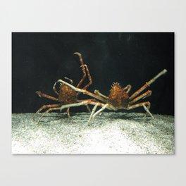 En Garde Canvas Print