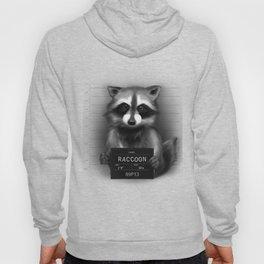 Raccoon Mugshot Hoody