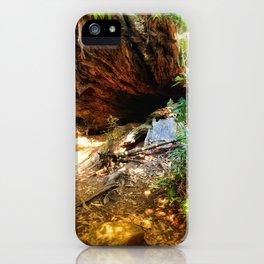 To wonderland iPhone Case