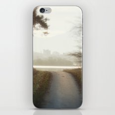 Ireland Path iPhone & iPod Skin