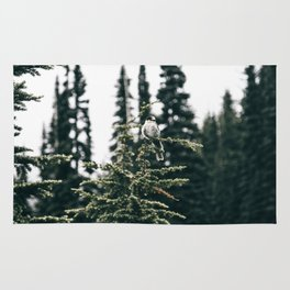 Grey Jay in The Trees Rug
