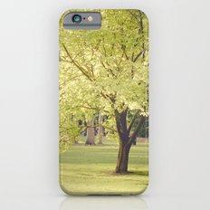 Magic Tree iPhone 6s Slim Case