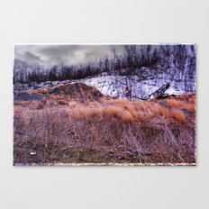 Up on the Mountain Canvas Print