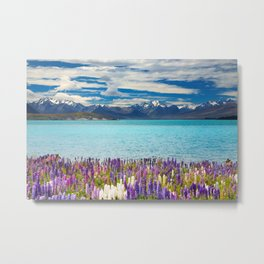 Landscape with Lupin Flowers Metal Print