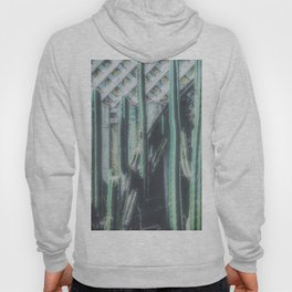 closeup green cactus with old vintage wood background Hoody