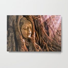 Ayutthaya Temple, Wat Mahathat, Thailand with rich sunlight playing across Buddha's head in tree Metal Print