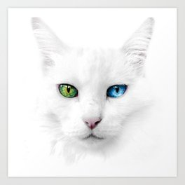 Dutchess the Cat Art Print