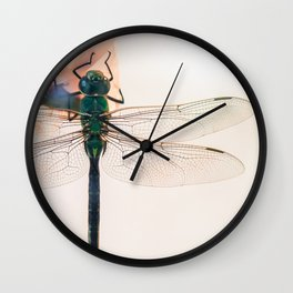 Evanescent Wall Clock