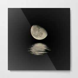 Lunar Neighbor Metal Print