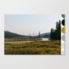Color Me Yellowstone Canvas Print