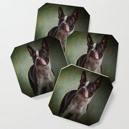 Woof Coaster