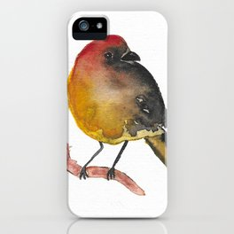 Robust Robin iPhone Case