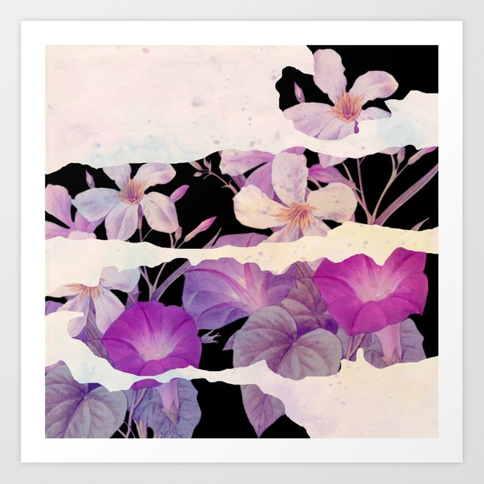 floral on torn paper Art Print