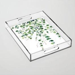 Eucalyptus Watercolor Acrylic Tray