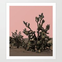 pink joshua tree Art Print
