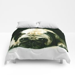 PUG POWER OUTAGE Comforters