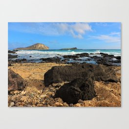 Makapu'u Reef Canvas Print