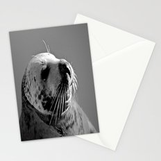 Howth Harbour Seal Stationery Cards