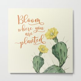 Bloom Where you are Planted Cactus Metal Print