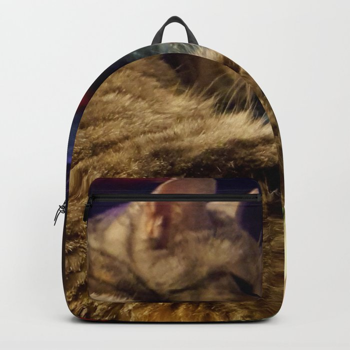 This is the life! Backpack