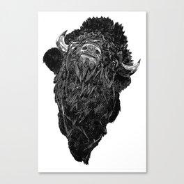 Bison Canvas Print