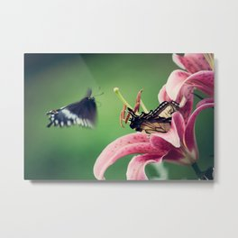 Butterfly & Lily Pink Photograph II Metal Print