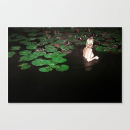 This is Not What You Think it Is Canvas Print