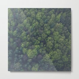 green-trees Metal Print