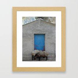 Sheep to Door Framed Art Print