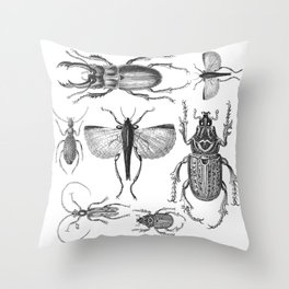 Vintage Beetle black and white drawing Throw Pillow