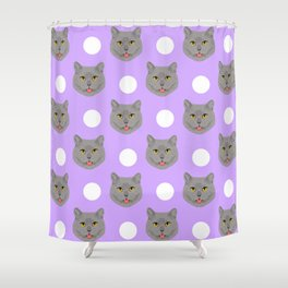 Kai - British shorthair cat gifts for cat lovers and cat lady gifts.  Cat people gifts Shower Curtain