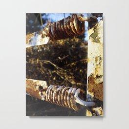 Rusted Springs Metal Print