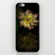 Lotus Bloom iPhone & iPod Skin