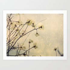 Spring Branches in White Botanical Art Print