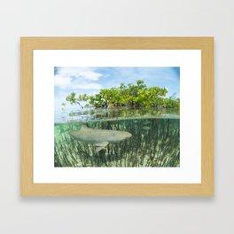 Just Below the Surface Framed Art Print