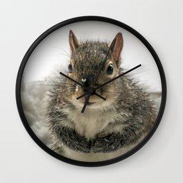 Adorable Praying Squirrel..Feed ME!! Wall Clock