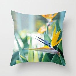 Bird of Paradise Photography, Green Orange Aqua Blue, Tropical Flower Nature Botanical Throw Pillow