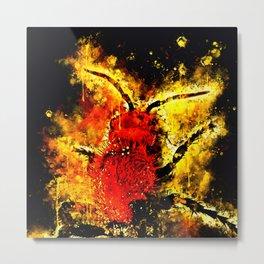 velvet ant wasp dasymutilla ws Metal Print