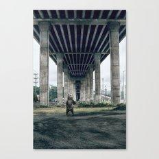 Bear sighting Canvas Print