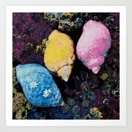 Vibrant periwinkles shellfish art Art Print