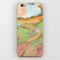 Four Corners of the World  iPhone & iPod Skin
