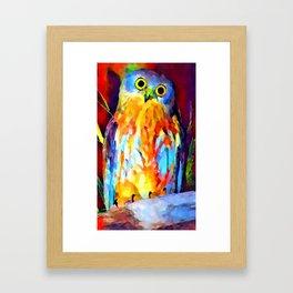 Barking Owl Framed Art Print