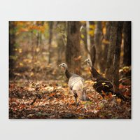 turkey Canvas Prints featuring Wild Turkey by Jai Johnson