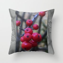 Late Winterberry Throw Pillow
