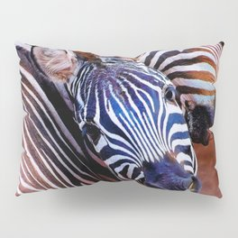 Two Zebras Playing With Each Other Pillow Sham